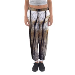 Fall Forest Artistic Background Women s Jogger Sweatpants