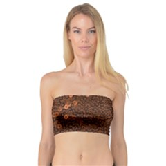 Brown Sequins Background Bandeau Top
