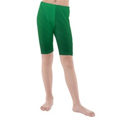 Green Beach Fractal Backdrop Background Kids  Mid Length Swim Shorts