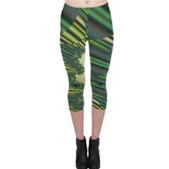 A Feathery Sort Of Green Image Shades Of Green And Cream Fractal Capri Leggings
