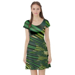 A Feathery Sort Of Green Image Shades Of Green And Cream Fractal Short Sleeve Skater Dress