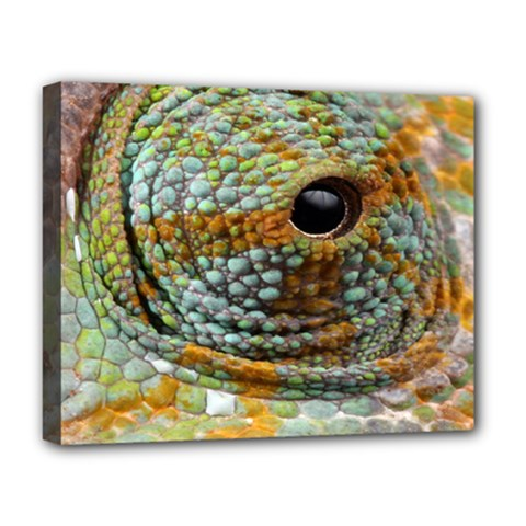 Macro Of The Eye Of A Chameleon Deluxe Canvas 20  x 16