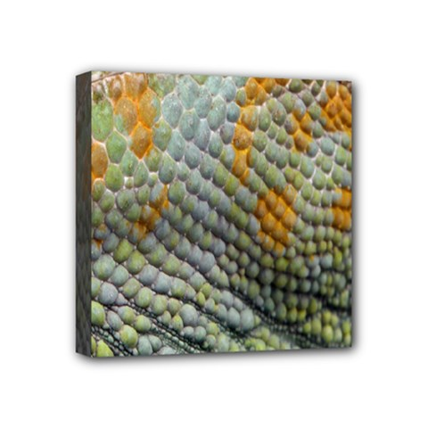 Macro Of Chameleon Skin Texture Background Mini Canvas 4  X 4
