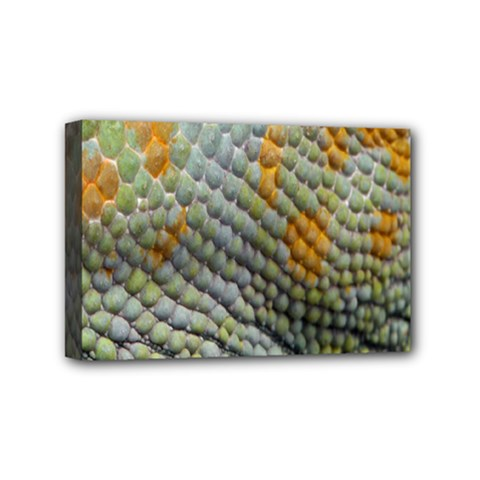 Macro Of Chameleon Skin Texture Background Mini Canvas 6  X 4