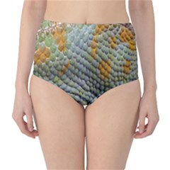 Macro Of Chameleon Skin Texture Background High-Waist Bikini Bottoms