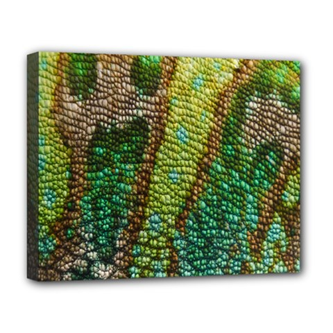 Colorful Chameleon Skin Texture Deluxe Canvas 20  X 16