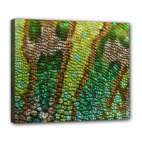Colorful Chameleon Skin Texture Deluxe Canvas 24  x 20