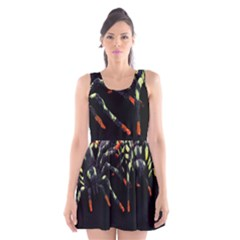 Colorful Spiders For Your Dark Halloween Projects Scoop Neck Skater Dress