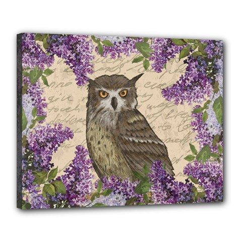 Vintage owl and lilac Canvas 20  x 16