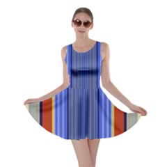 Colorful Stripes Background Skater Dress