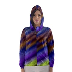 Fractal Color Stripes Hooded Wind Breaker (Women)