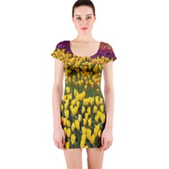 Colorful Tulips In Keukenhof Gardens Wallpaper Short Sleeve Bodycon Dress
