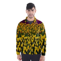 Colorful Tulips In Keukenhof Gardens Wallpaper Wind Breaker (men)