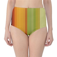 Colorful Citrus Colors Striped Background Wallpaper High-Waist Bikini Bottoms
