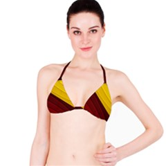 3d Glass Frame With Red Gold Fractal Background Bikini Top