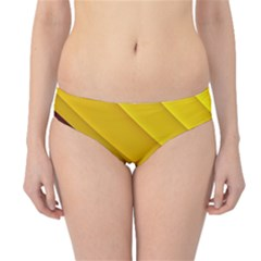 3d Glass Frame With Red Gold Fractal Background Hipster Bikini Bottoms