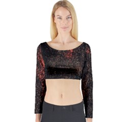 July 4th Fireworks Party Long Sleeve Crop Top