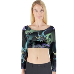 Fractal Image With Sharp Wheels Long Sleeve Crop Top
