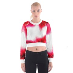 Abstract Pink Page Border Women s Cropped Sweatshirt