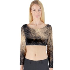 Fireworks Party July 4th Firework Long Sleeve Crop Top