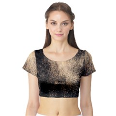 Fireworks Party July 4th Firework Short Sleeve Crop Top (tight Fit)