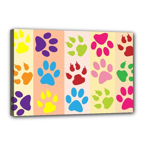 Colorful Animal Paw Prints Background Canvas 18  X 12