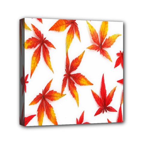Colorful Autumn Leaves On White Background Mini Canvas 6  X 6