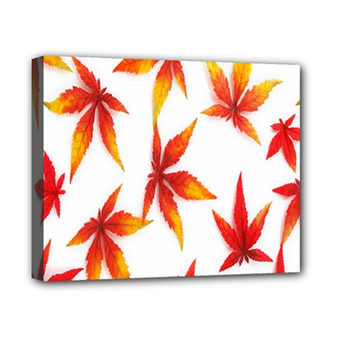 Colorful Autumn Leaves On White Background Canvas 10  X 8
