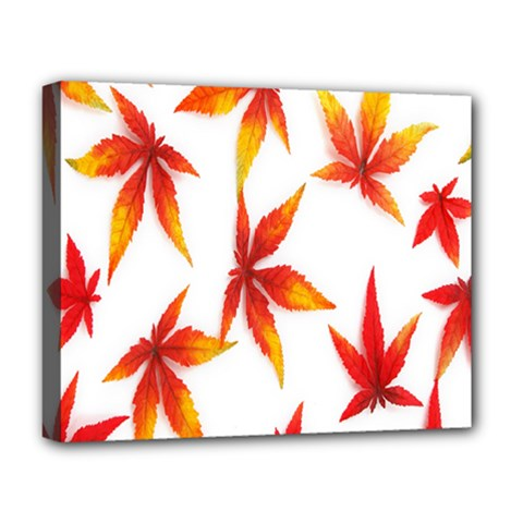 Colorful Autumn Leaves On White Background Deluxe Canvas 20  X 16
