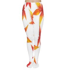 Colorful Autumn Leaves On White Background Women s Tights