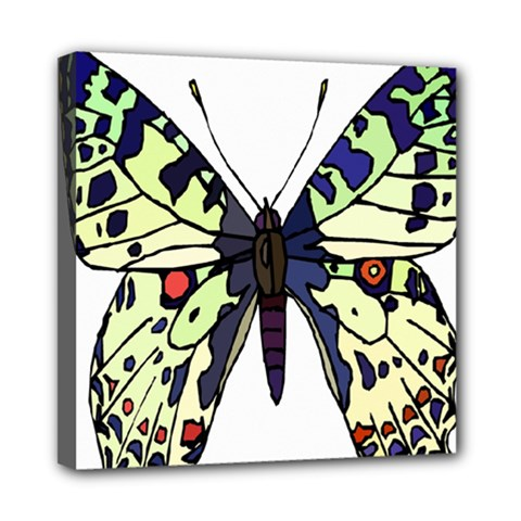 A Colorful Butterfly Image Mini Canvas 8  X 8