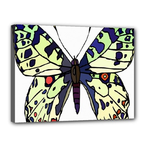 A Colorful Butterfly Image Canvas 16  X 12