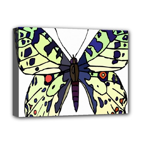 A Colorful Butterfly Image Deluxe Canvas 16  x 12