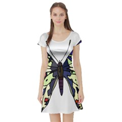 A Colorful Butterfly Image Short Sleeve Skater Dress