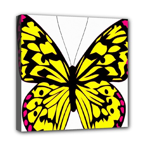 Yellow A Colorful Butterfly Image Mini Canvas 8  x 8