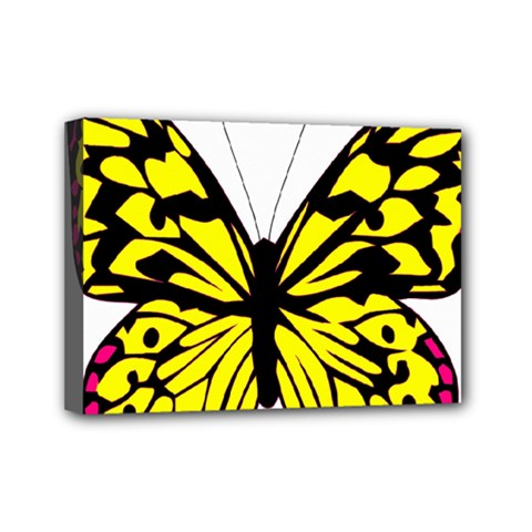 Yellow A Colorful Butterfly Image Mini Canvas 7  X 5