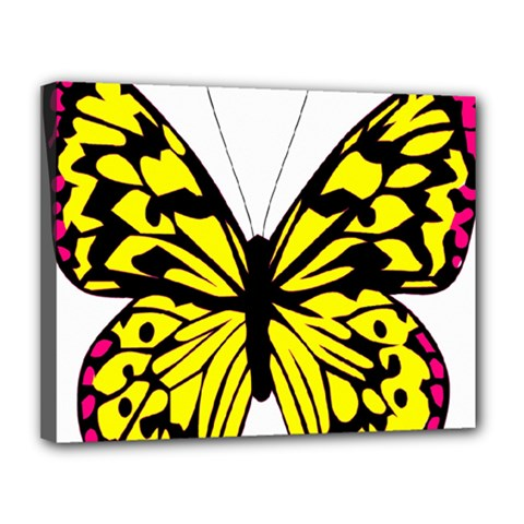 Yellow A Colorful Butterfly Image Canvas 14  X 11