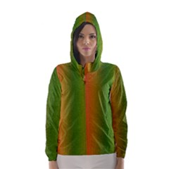 Colorful Stipple Effect Wallpaper Background Hooded Wind Breaker (women)