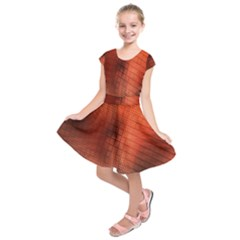Background Technical Design With Orange Colors And Details Kids  Short Sleeve Dress