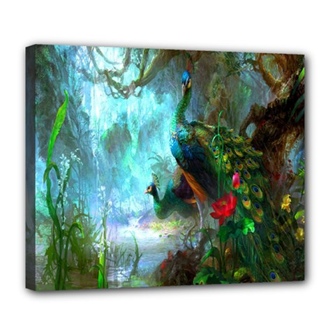 Beautiful Peacock Colorful Deluxe Canvas 24  x 20