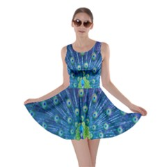 Amazing Peacock Skater Dress