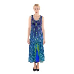 Amazing Peacock Sleeveless Maxi Dress
