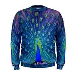 Amazing Peacock Men s Sweatshirt