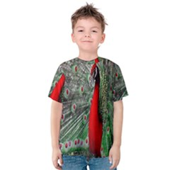 Red Peacock Kids  Cotton Tee