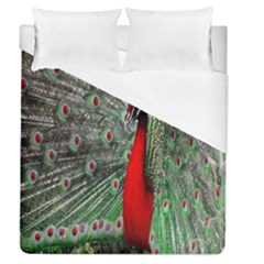 Red Peacock Duvet Cover (queen Size)