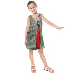Red Peacock Kids  Sleeveless Dress