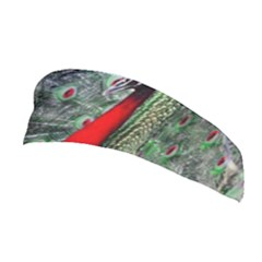 Red Peacock Stretchable Headband