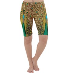 Peacock Bird Feathers Cropped Leggings