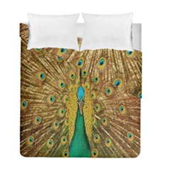 Peacock Bird Feathers Duvet Cover Double Side (full/ Double Size)