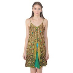 Peacock Bird Feathers Camis Nightgown